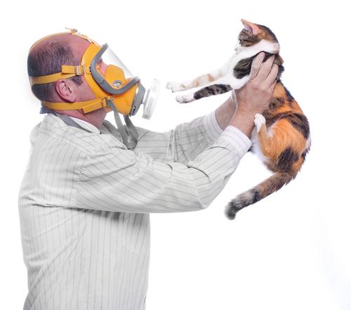 alergias mascotas
