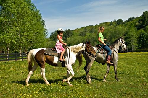 La equinoterapia: los caballos te ayudan