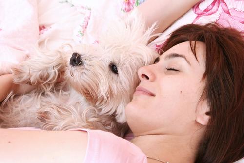 dormir con mascotas