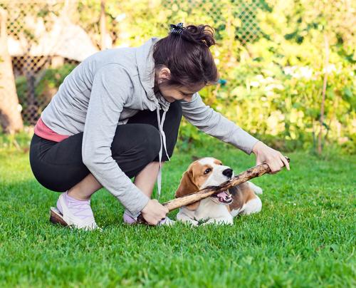La importancia de jugar con tu perro