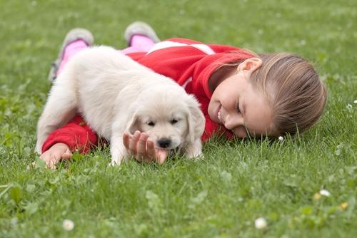 cachorros y niños
