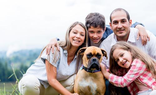 Cuidados para la adaptación del cachorro a su nuevo hogar