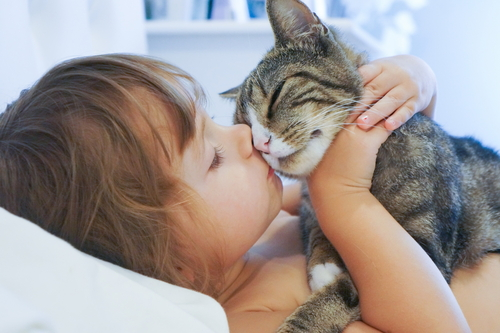 Child kissing and holding a cat