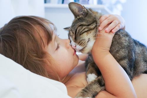 gato y niña