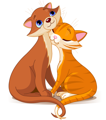 La reproducción y el celo en los gatos