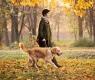 paseo perro