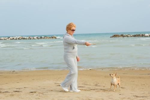 Perro en la playa con su dueña