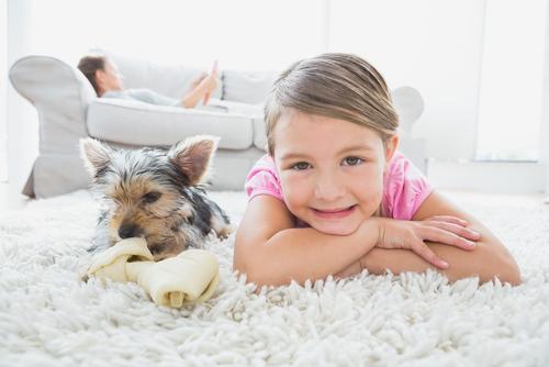 perro y juguete niño