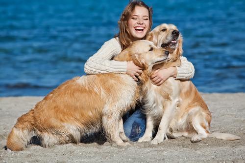 Perros con su dueña.