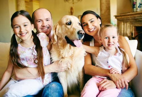 perro con familia