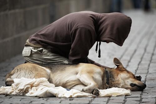 perro y mendigo 4