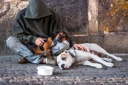 perro y mendigo