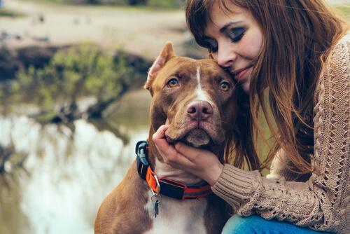 Persona agrazando a su perro
