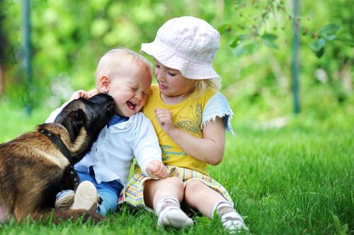perro y niños