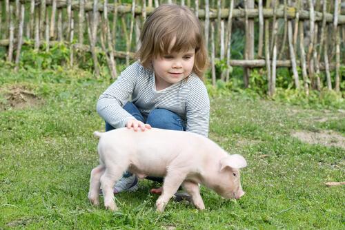 Menina com porquinho