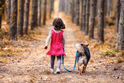 Un perro protege a una niña perdida en el bosque durante toda la noche