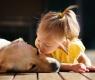 bebes que viven con mascotas