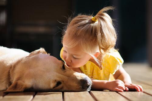 Los bebés que viven con mascotas desarrollan menos alergias