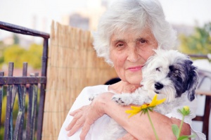 perro-y-persona-mayor