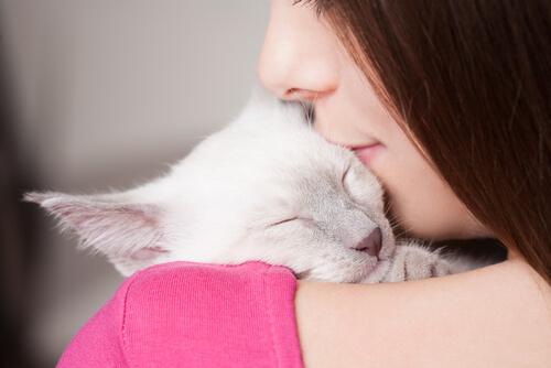 amante de los gatos