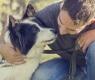 rescatar a un perro