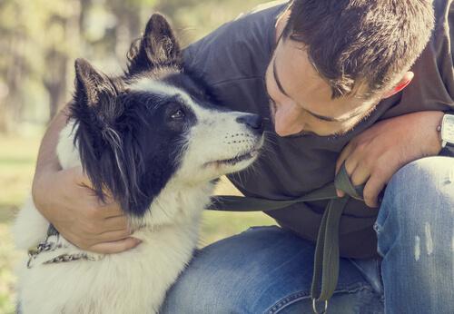 resgatar um cachorro