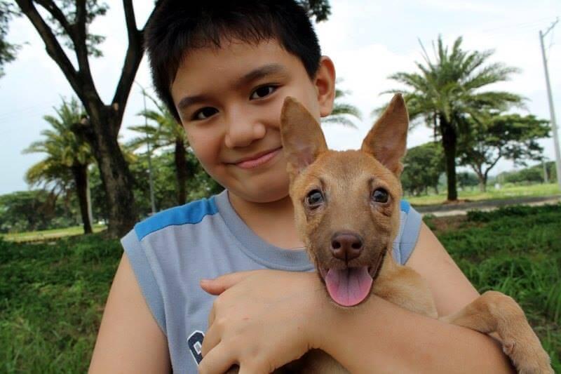 niño y su perro