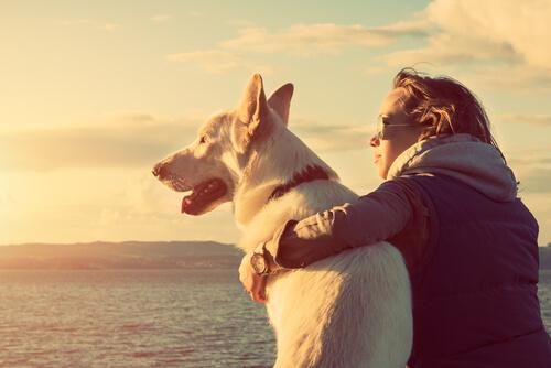 cariño entre mujer y perro