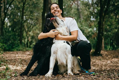 Mulher abraçando cães