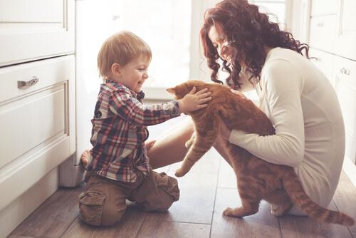 Cómo ayudar a los niños a sobrellevar la muerte de su mascota