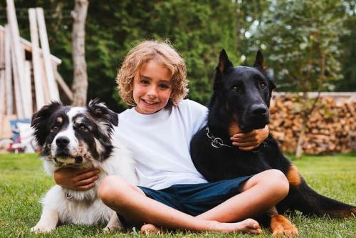 Niños y perros: a cada edad una responsabilidad