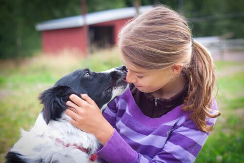 Собака породы идеально подходит для детей