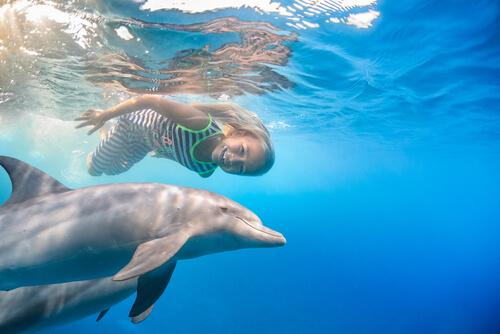 Delfin nadando con una niña