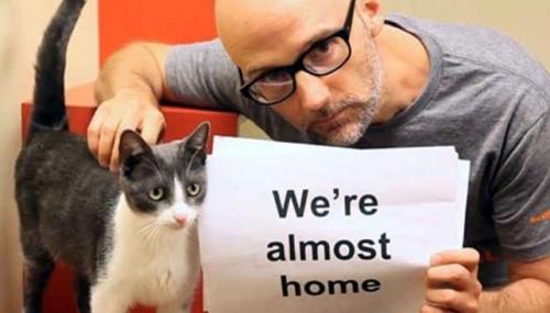 Músico Moby dará una parte de sus ingresos a las organizaciones de protección de los animales
