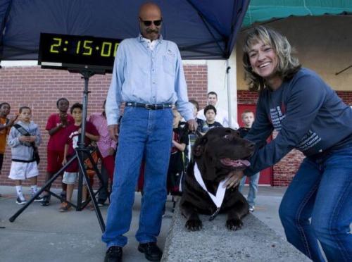Un perrito se cuela en una media maratón y queda en séptimo lugar