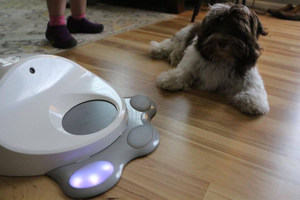 Tu perro ya puede tener su propia consola de juegos
