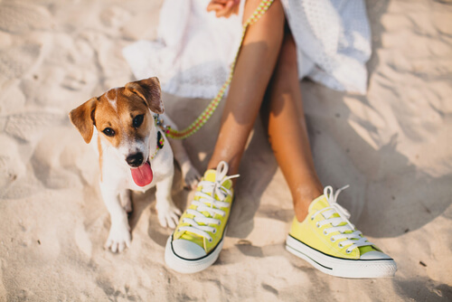 Tener una mascota influye en el estado de ánimo