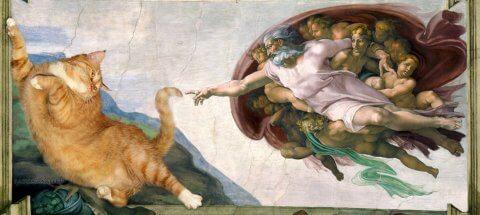 gato artista 2