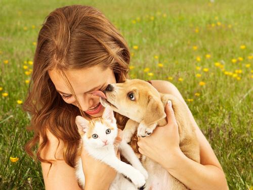 los beneficios de tener una mascota