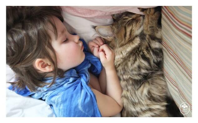niña autista y su gato 3