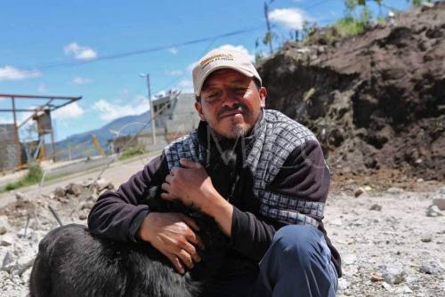 perro se niega a abandonar su casa despues de un terremoto 2