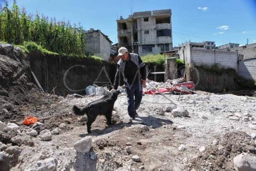 perro se niega a abandonar su casa despues de un terremoto 3