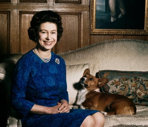 La vida de los perros de la reina Isabel II