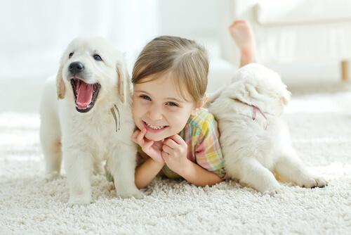 las mascotas y los niños