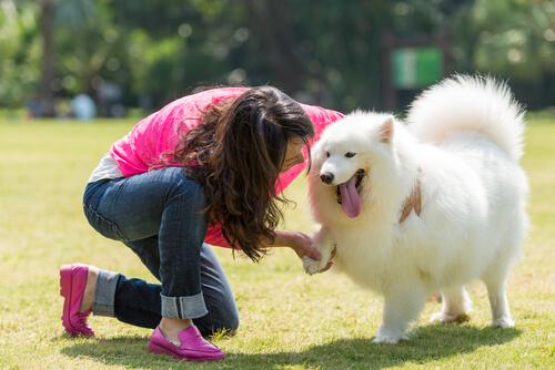 ¿Mi mejor amigo? ¡Mi perro!
