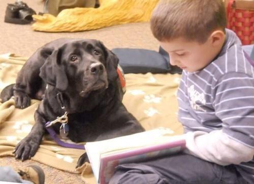 Los perros facilitan el aprendizaje infantil