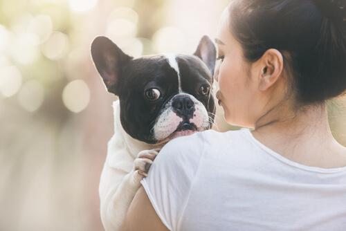 Carta de un perro adoptado a su ama