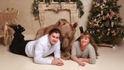Stepan, el oso mascota de una pareja rusa