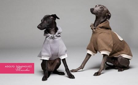 Adolfo Domínguez lanza una colección para perros