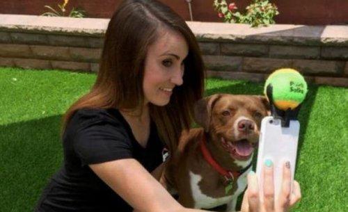 Selfie, cómo conseguir el mejor con nuestro perro